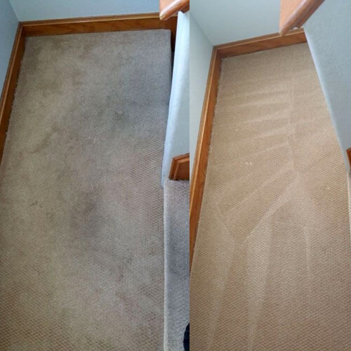 Carpet Cleaning Torrance