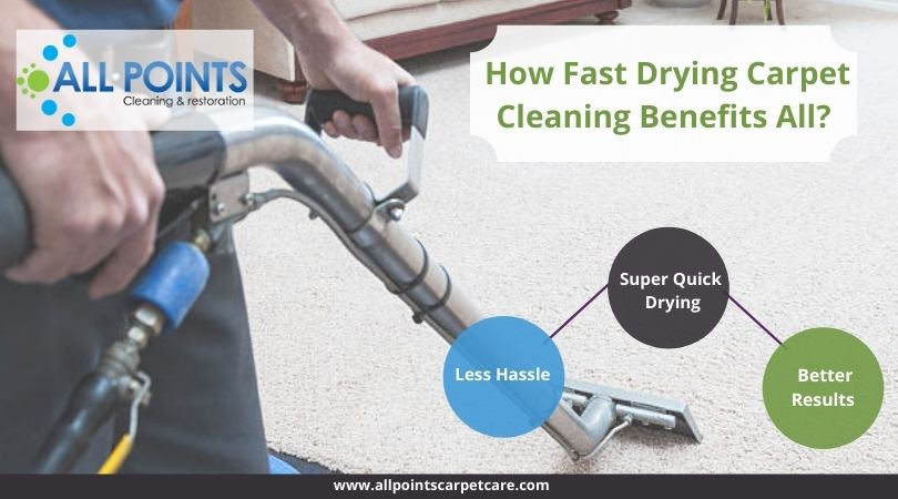 Fast Drying Carpet Cleaning Torrance CA