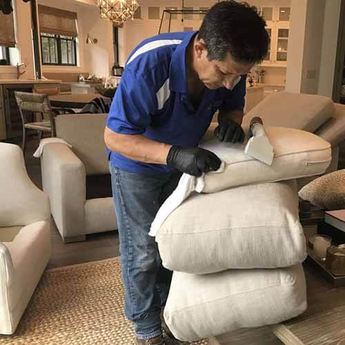 Professional Upholstery Cleaning Torrance