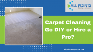 Carpet Cleaning : Go DIY or Hire a Pro