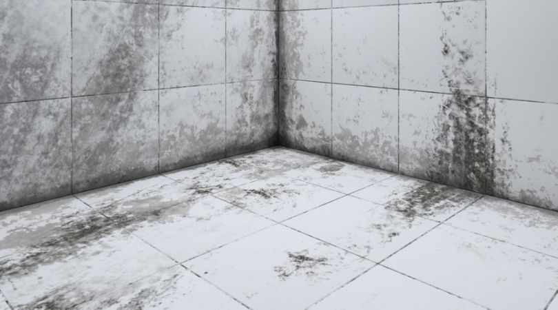 Professional For Tile And Grout Cleaning in Torrance CA