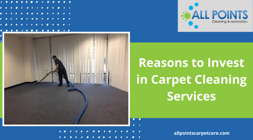 Reasons to Invest in Carpet Cleaning Services